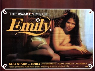 The Awakening of Emily 1976 UK Quad Poster