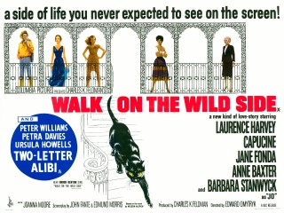 Walk On The Wild Side 1962 Quad Poster